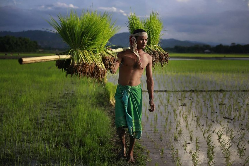 How do Indian farmers adapt to climate change amid socio-economic hurdles?